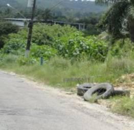Descarte de pneus usados e haja poluição