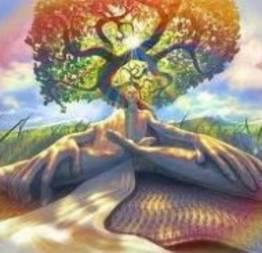 Somente pela meditação podemos conhecer a mente