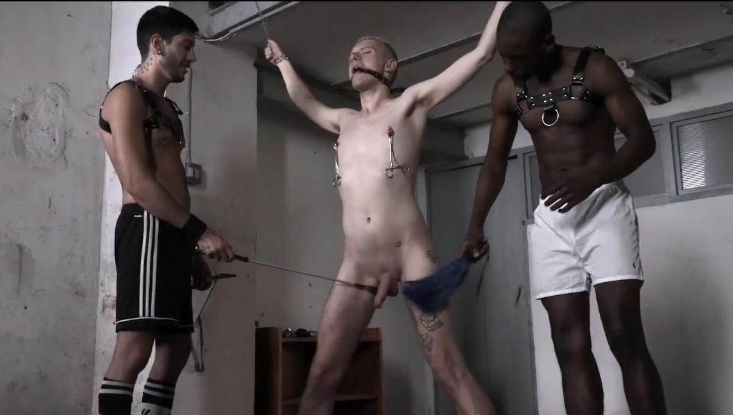 Novinho torturado pelos dotados