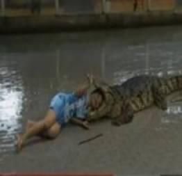 Mulher arrisca a vida e coloca cabeça dentro de boca de crocodilo!
