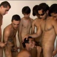 Safado guloso encara seis machos de uma vez