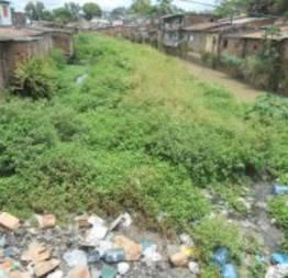 Poluição do rio capibaribe