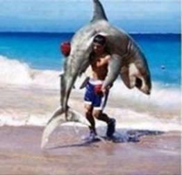 Catando um tubarão na unha para ganhar o prêmio
