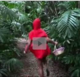 Lobo mal e chapeuzinho vermelho ninfetinha