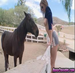 Novinha tesuda pelada e nua e seu cavalo