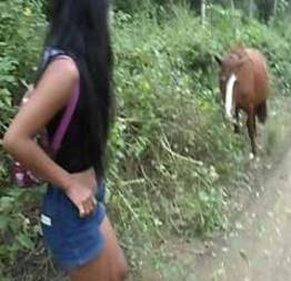 Novinha Perua doida pra fuder com cavalo